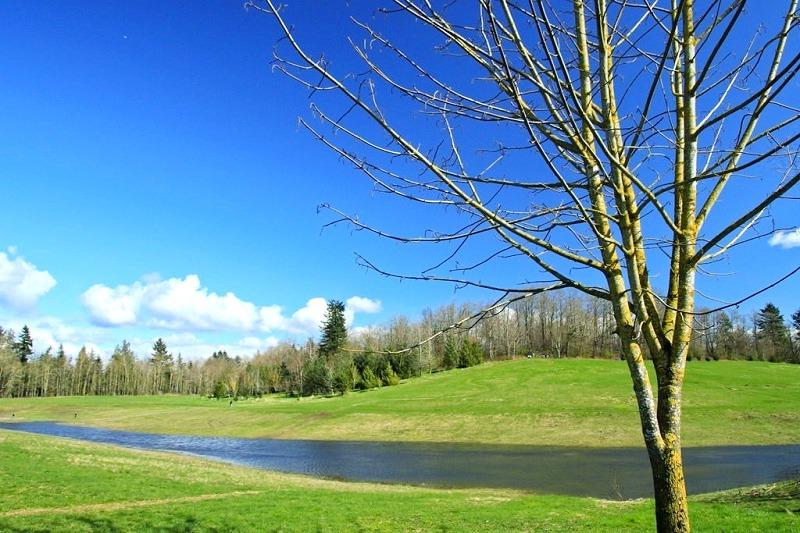 Pepin Brook Trail